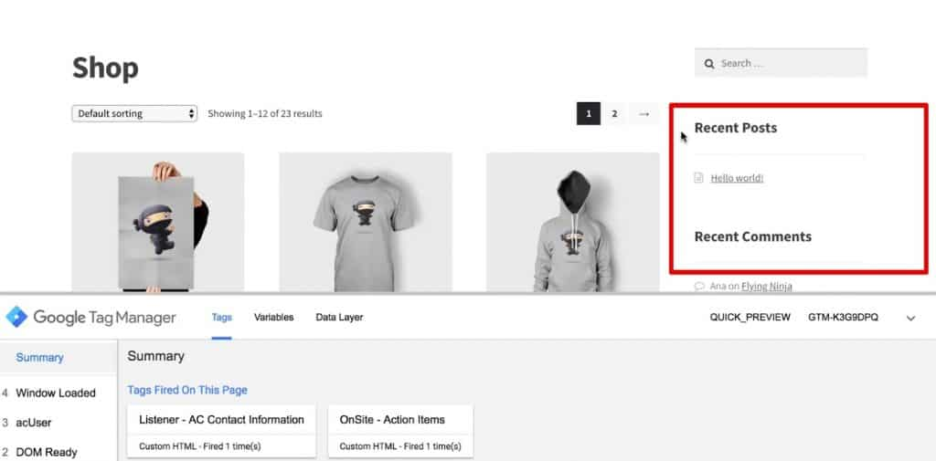 The newsletter signup widget doesn't show up on the demoshop web page