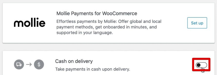 Selecting the Cash on delivery option to collect payments on the demo store