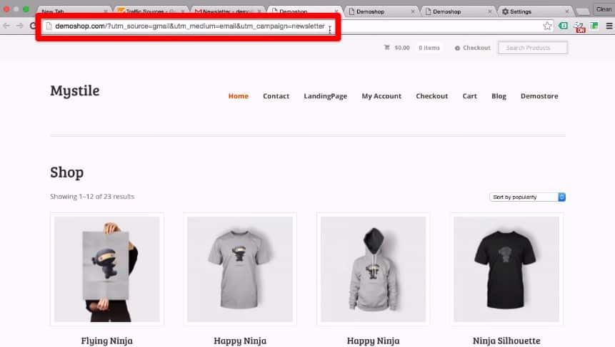 URL Tail of the second link to demo shop