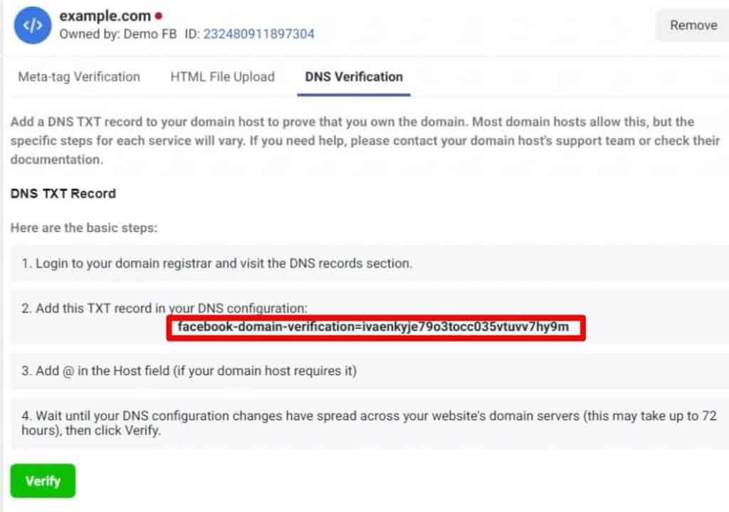 Instructions on how to verify Domain via DNS Verification: login to domain registrar and view DNS records, add TXT record to configuration, add @ in host field, wait 72 hours for changes, click Verify